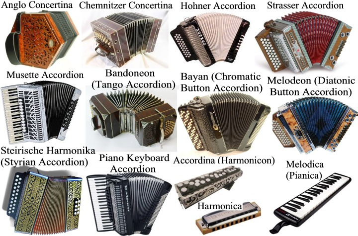 Akkordica allows you to reproduce many different accordion types (diatonic and chromatic) for various genres of musical styles such as Folk, Rock, Blues, Jazz, Polka, Bal-musette, Cajun, Zydeco, Classical, Schrammelmusik, Klezmer, Levenslied, Sevdalinka, Boeremusiek, Forró, Merengue, Cueca, Milonga, Chamamé, Cumbia, Vallenato, Norteño, Tex-Mex, Saltarello, Tarantella, Ceol and Inuit music.