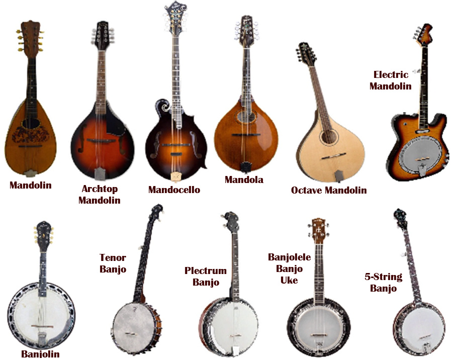What Is The Difference Between Banjo And Mandolin ...